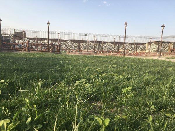 محوطه باغ تالار مهران
